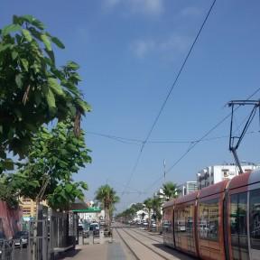 tram 3