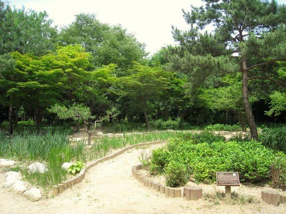 800px-botanical_garden_changgyeonggung_-_seoul_korea