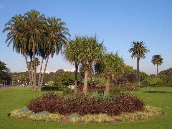 800px-Centennial_Park_Sydney_3