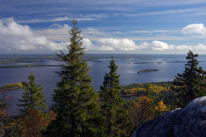 800px-Koli_National_Park,_North_Karelia,_Finland_-_Scenery_from_Ukkokoli