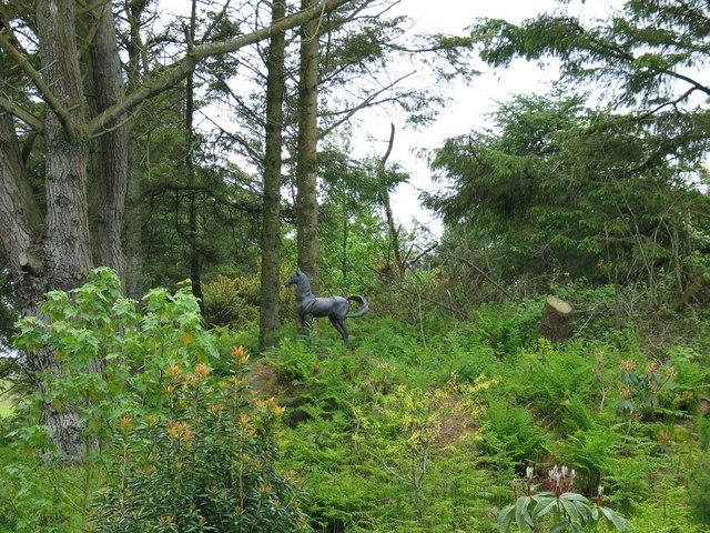 Achamore_Garden,_Gigha_-_geograph.org.uk_-_179528