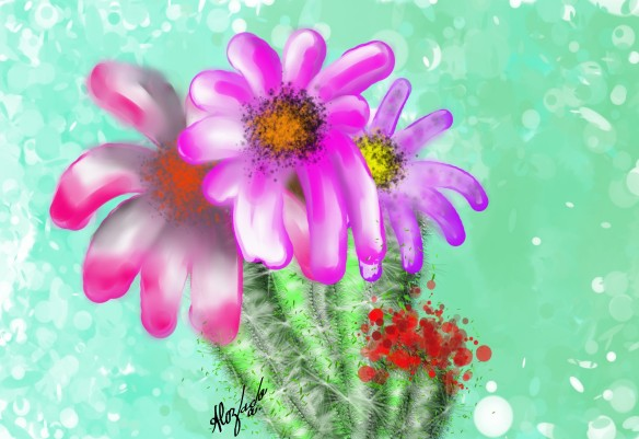 Cactus with purple flowers_B010