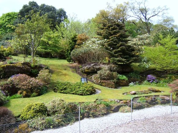 Rock_garden,_Mount_Stuart,_Bute-geograph-3580942-by-Barbara-Carr