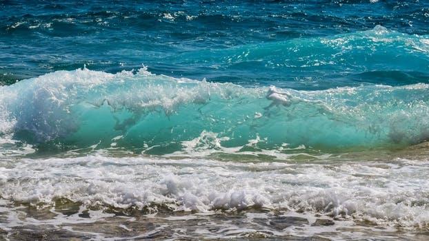 pexels-photo-462089
