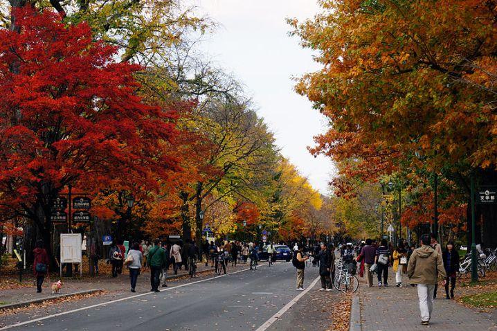 131103_Hokkaido_University_Sapporo_Hokkaido_Japan12s5