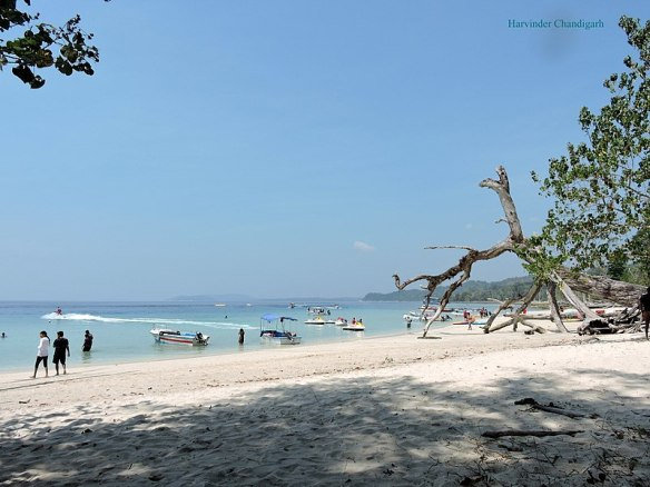 800px-Elephenta_beach,_Havelock_Island,_Andamn,_India