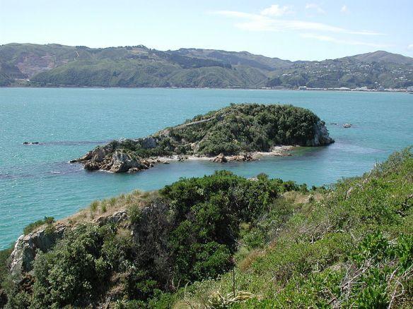 800px-Mokopuna_Island_north_of_Matiu-Somes_Island