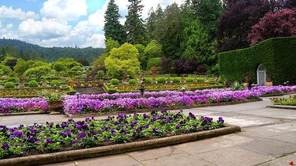 Butchart_Gardens_-_Italian_Garden
