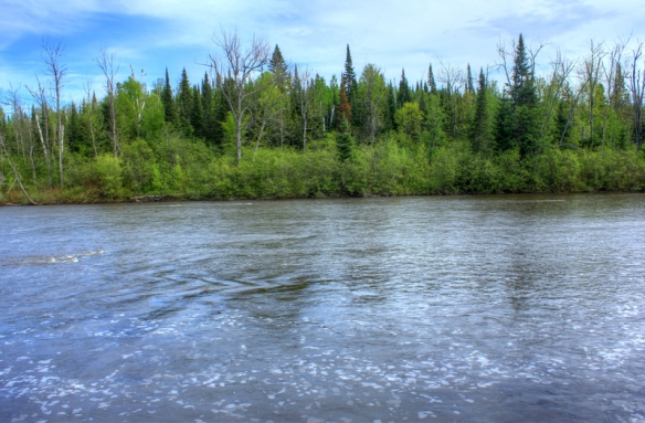 ontario-pigeon-river-provincial-park-water-and-trees