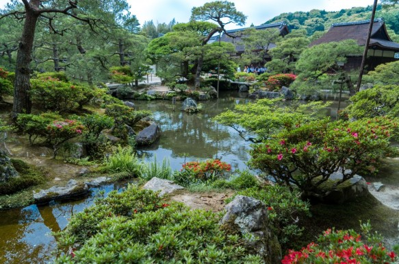 ginkaku_ji_gardens_kyoto_japan_nature_flowers_water_pond_japanese-603167.jpg!d