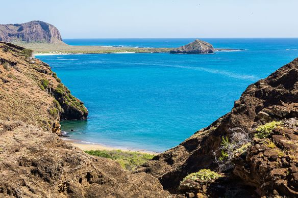 Paisaje_en_Punta_Pitt,_isla_de_San_Cristóbal,_islas_Galápagos,_Ecuador,_2015-07-24,_DD_75