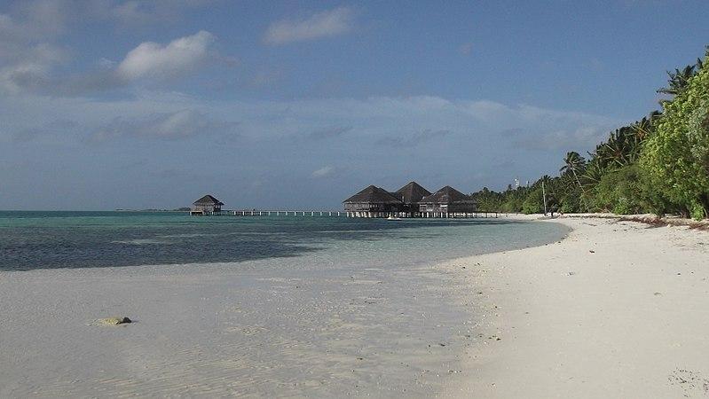800px-Beach_at_Medhufushi_Island_Resort_in_the_Maldives