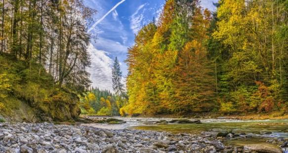 ammer_autumn_river_beautiful_hiking_alpine_bavaria_trees-1442041.jpg!d