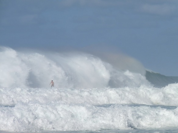 hawaii-2003738_1280