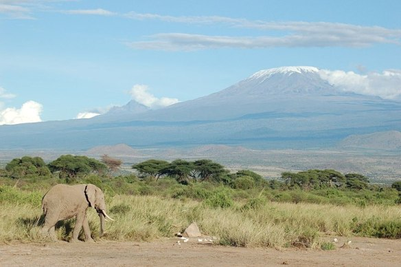 800px-Elephant_and_Kilimanjaro