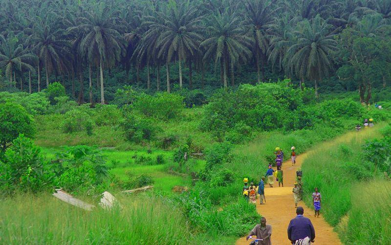 800px-Sierra_Leone_Road