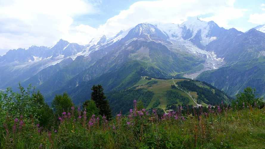 meadow-alpe-hautes-alpes-landscape